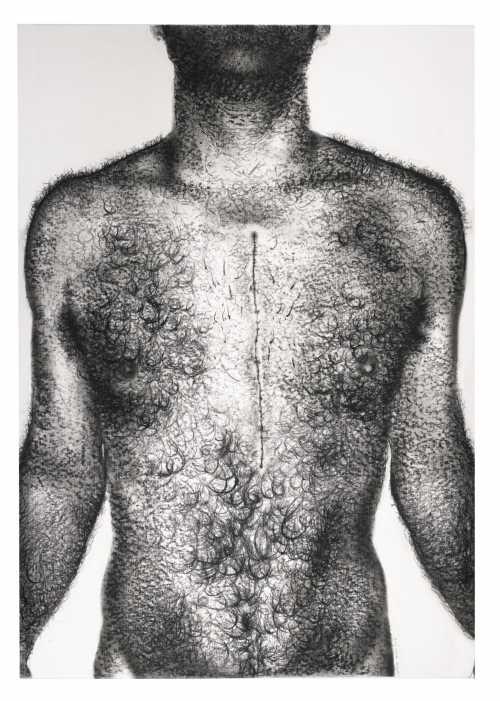 آرتچارت | اثر هنری ازمیترا فراهانی