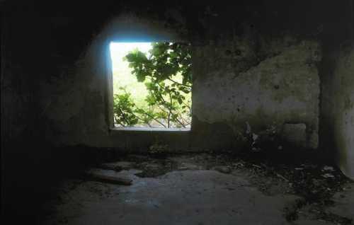 آرتچارت | A Window Through The Life از عباس کیارستمی
