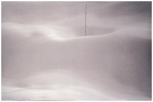 آرتچارت | اثر هنری ازعباس کیارستمی